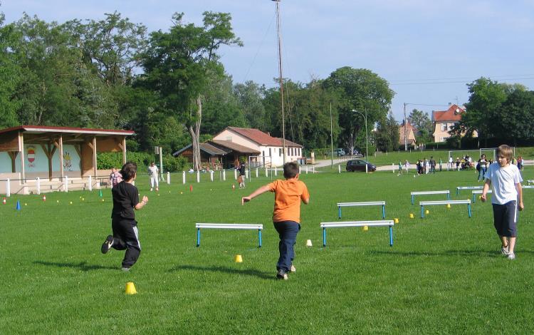 Rencontre d'athlétisme au stade à Ensisheim pour les classes de CE2 et de CM1 /CM2 – 22 Juin 2010