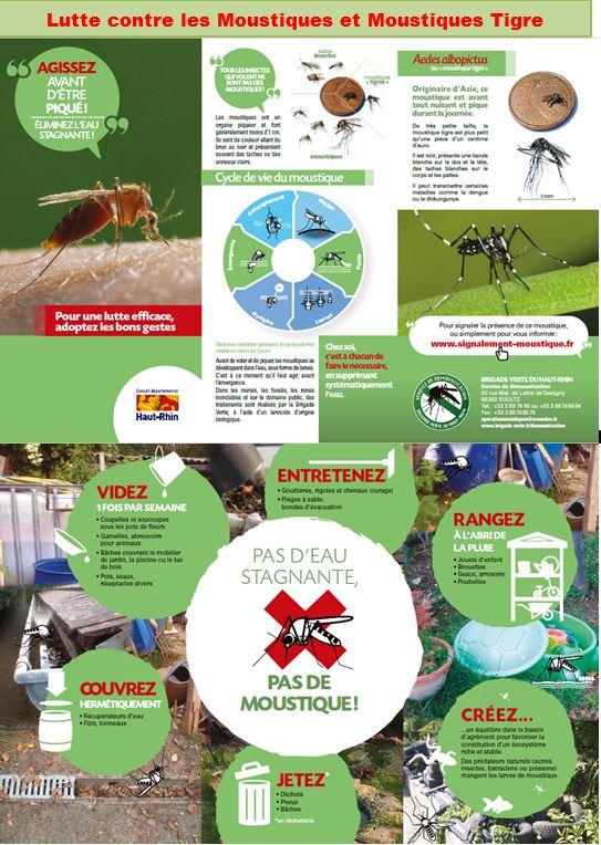 lutte contre les moustiques